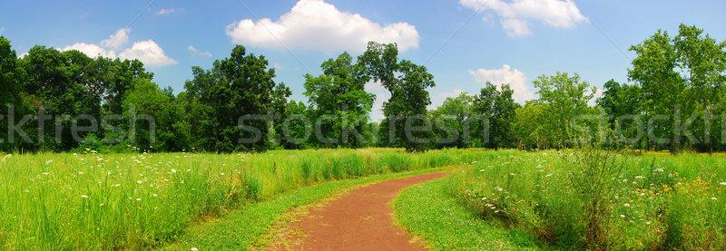 静か 農村 歩道 パノラマ 木 草 ストックフォト © rabbit75_sto