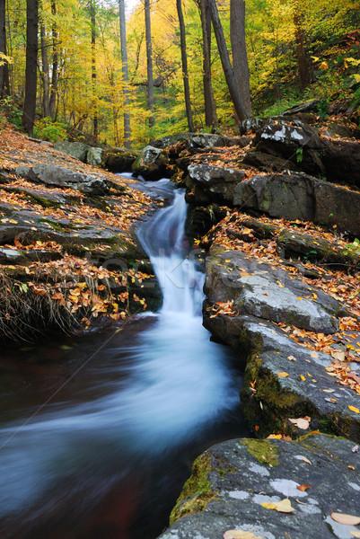 Foto stock: Outono · montanha · enseada · rochas · amarelo