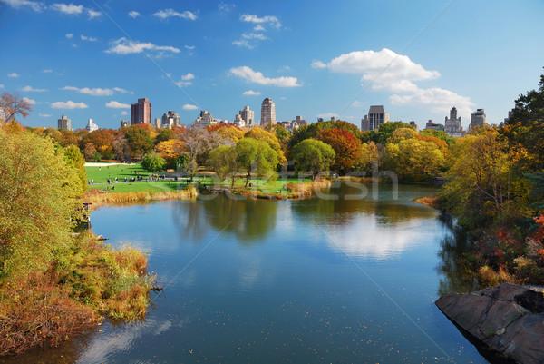New York City Manhattan Central Park najaar wolkenkrabbers kleurrijk Stockfoto © rabbit75_sto