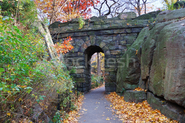 ニューヨーク市 マンハッタン セントラル·パーク 石 橋 秋 ストックフォト © rabbit75_sto