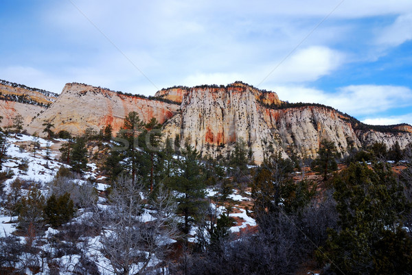Zion National Park in winter Stock photo © rabbit75_sto