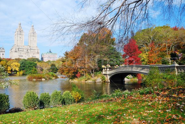 New York City Manhattan Central Park panorama autunno lago Foto d'archivio © rabbit75_sto