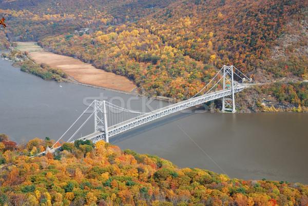 Outono montanha floresta ponte tenha Foto stock © rabbit75_sto