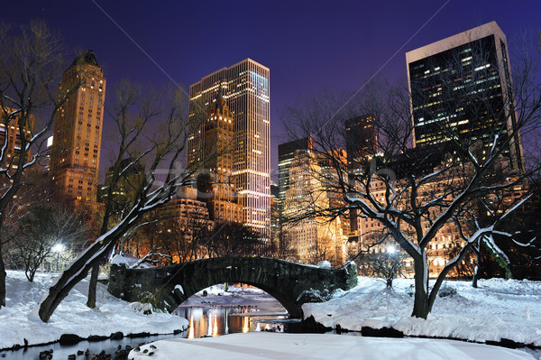 New York City manhattan Central Park panorama crepúsculo inverno Foto stock © rabbit75_sto