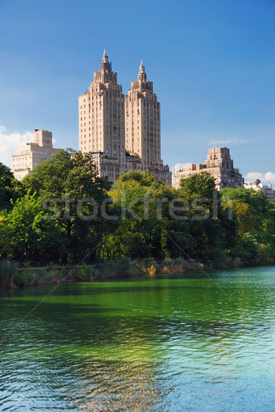 New York City Central Park urbaine Manhattan Skyline gratte-ciel Photo stock © rabbit75_sto