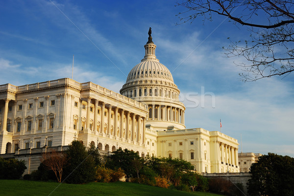 Capitol Hill Building in detail, Washington DC Stock photo © rabbit75_sto