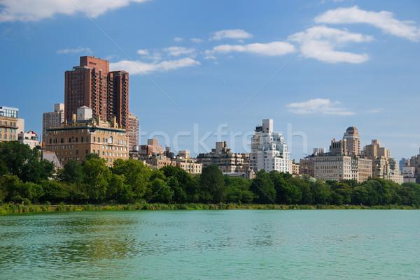 Manhattan Central Park skyline New York City stedelijke wolkenkrabbers Stockfoto © rabbit75_sto