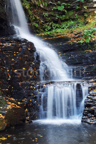 Autumn Waterfall in mountain Stock photo © rabbit75_sto
