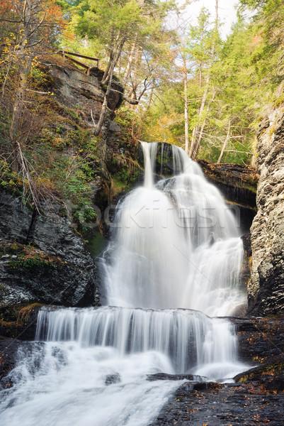 Najaar waterval berg loof bos rotsen Stockfoto © rabbit75_sto