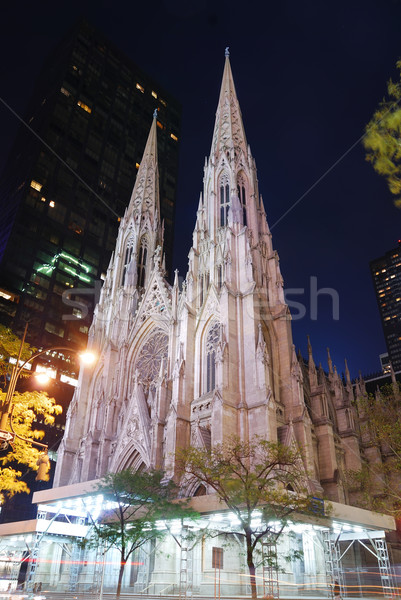 New York City saint cathédrale Manhattan nuit ville Photo stock © rabbit75_sto