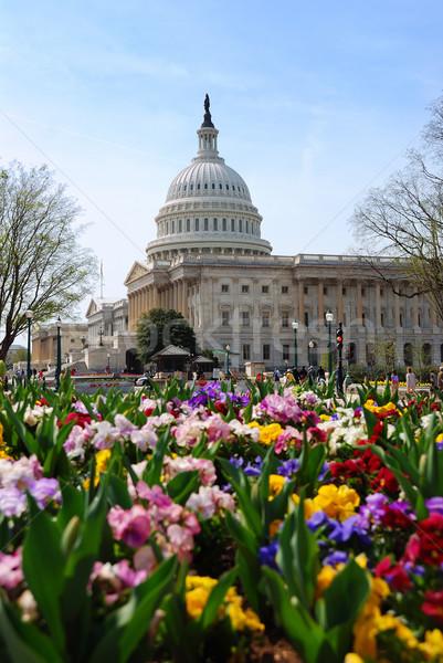 Gebouw Washington DC heuvel symbolisch mijlpaal overheid Stockfoto © rabbit75_sto