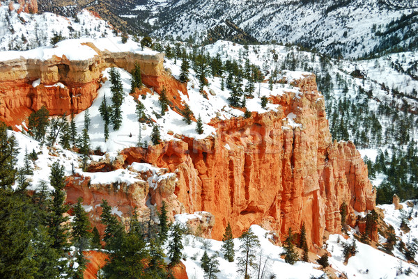 Bryce Canyon with snow in winter. Stock photo © rabbit75_sto
