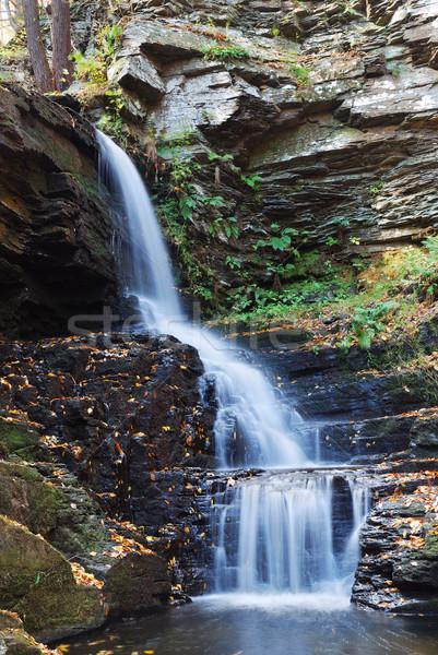 Najaar waterval berg water boom landschap Stockfoto © rabbit75_sto