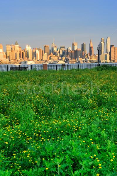 New York City Manhattan with lawn Stock photo © rabbit75_sto