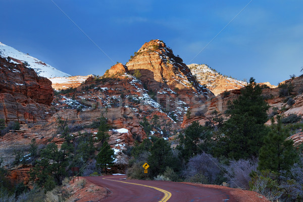 Zion National Park with road and snow Stock photo © rabbit75_sto