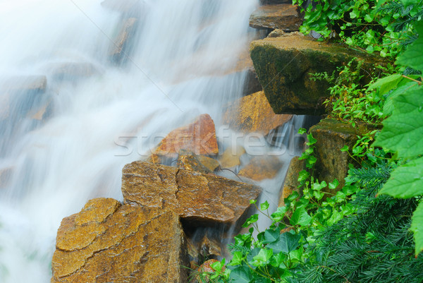 Cachoeira rochas verde plantas água Foto stock © rabbit75_sto