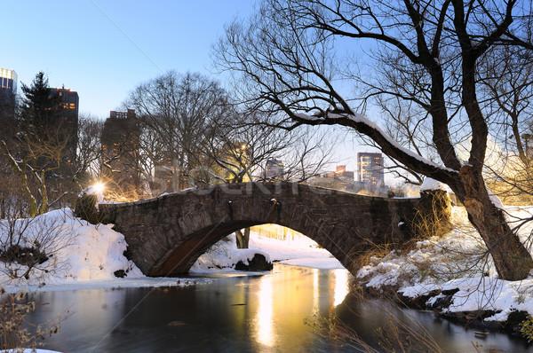 New York City Manhattan Central Park winter brug hemel Stockfoto © rabbit75_sto