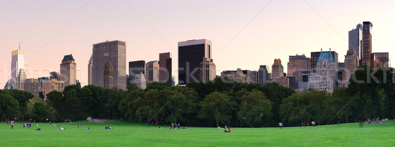 New York City Central Park crépuscule panorama Manhattan Skyline Photo stock © rabbit75_sto