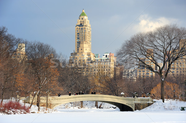 New York City Manhattan Central Park panorama hiver glace Photo stock © rabbit75_sto