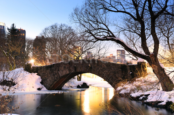 New York City manhattan Central Park inverno ponte céu Foto stock © rabbit75_sto