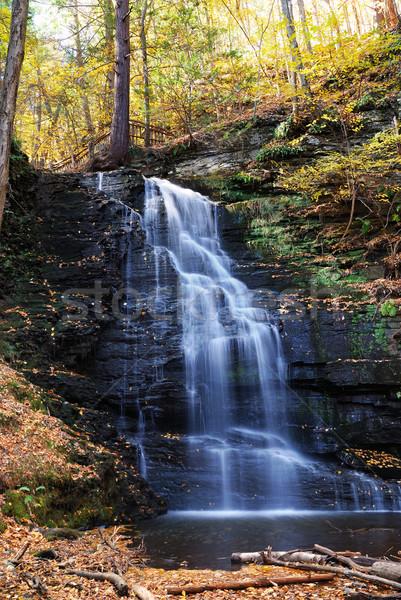 Stockfoto: Najaar · waterval · berg · loof · bruidsmeisje · landschap