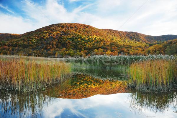 Outono montanha lago ver colorido Foto stock © rabbit75_sto