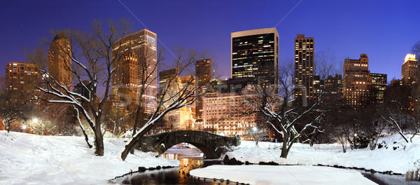 Stockfoto: New · York · City · Manhattan · Central · Park · panorama · schemering · winter