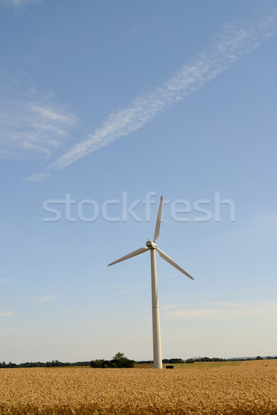 windmills for renewable electric energy production Stock photo © rabel