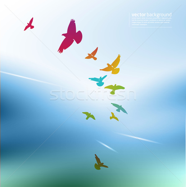 Stock photo: rainbow birds