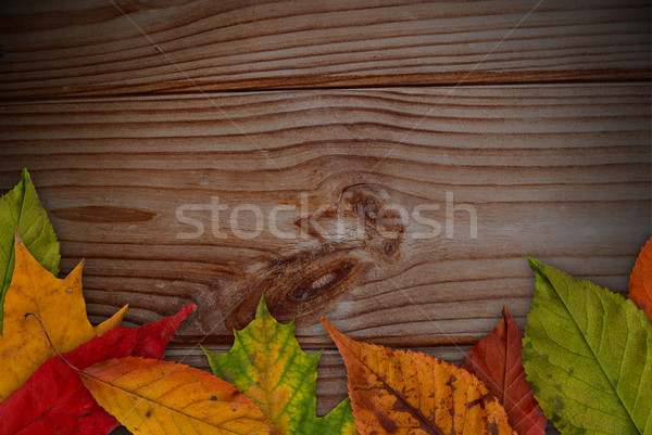 Escrever texto madeira natureza folha Foto stock © radoma