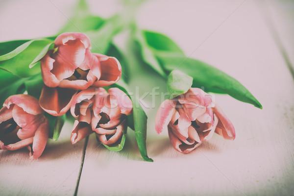 Rouge printemps tulipes table en bois nature jardin Photo stock © radub85