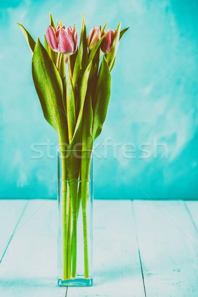 Humide rose tulipe fleurs vase amour Photo stock © radub85