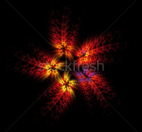 Ognia kwiat czerwony fractal czarny kolor Zdjęcia stock © raduga21