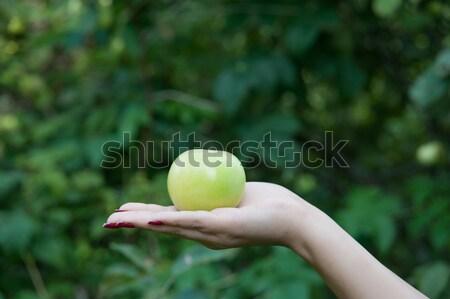 Zielone jabłko strony dojrzały żywności owoców Zdjęcia stock © raduga21