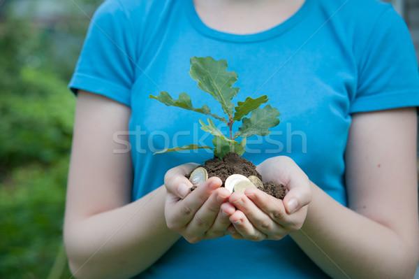 Monet ziemi ręce drzewo charakter Zdjęcia stock © raduga21