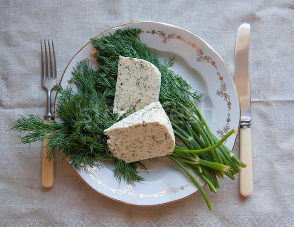 Сыр из козьего молока кусок сыра пластина продовольствие Сток-фото © raduga21