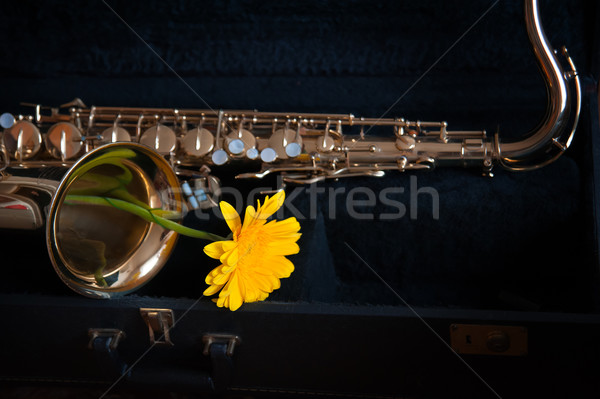 saxophone with flower Stock photo © raduga21