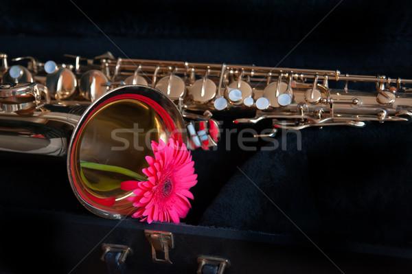 Saksofon kwiat żółty złota kolor dźwięku Zdjęcia stock © raduga21