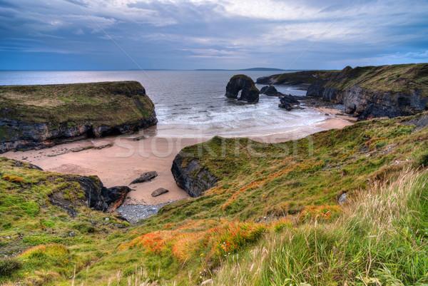 Klif oceaan Ierse kustlijn wolken voorjaar Stockfoto © rafalstachura