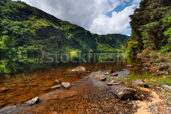 Lago ensolarado manhã cênico parque água Foto stock © rafalstachura