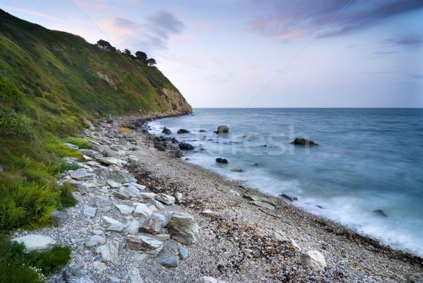 Kustlijn Ierland Ierse zee schiereiland boom Stockfoto © rafalstachura