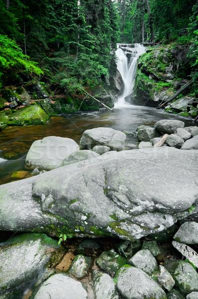 Cascade montagnes sud-ouest Pologne Europe arbre Photo stock © rafalstachura