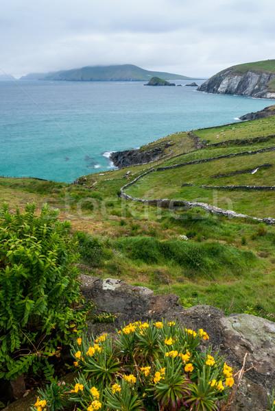 Photo stock: Tête · péninsule · faible · niveau · nuages · plage