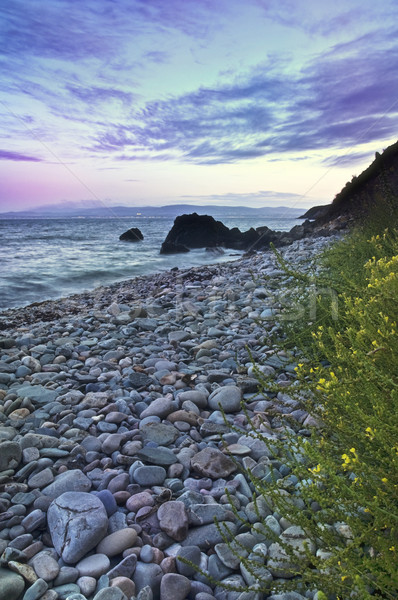 Stones and coastline Stock photo © rafalstachura