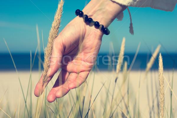 Kéz dűne fű napos idő csúszda tenger Stock fotó © rafalstachura