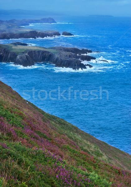 Ierland kustlijn republiek Stockfoto © rafalstachura