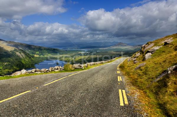 Hegy út dombok park köztársaság Írország Stock fotó © rafalstachura