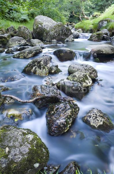 Water stream Stock photo © rafalstachura