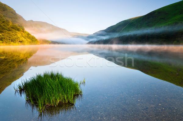 сумерки горные озеро живописный парка Ирландия Сток-фото © rafalstachura