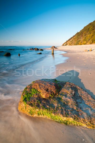 Stockfoto: Zee · wal · oostzee · weinig · water